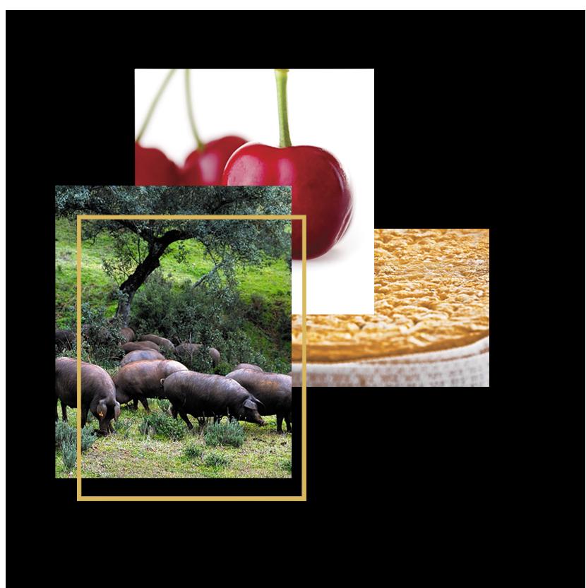 Complosicion fotografica de alimetos