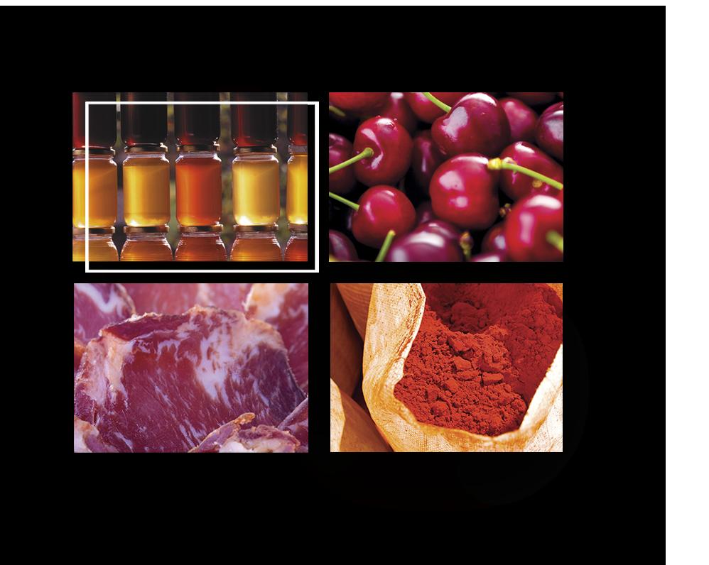 Cuatro fotos de alimentos de extremadura